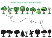 Trees and Silhoutte of trees - game for children