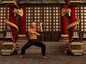 Постер, плакат: Kung Fu Warrior