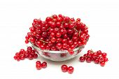 Ripe Bunches Of Juicy Red Currant Isolated On White Background