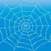 image of cobweb  - Vector nature background - JPG