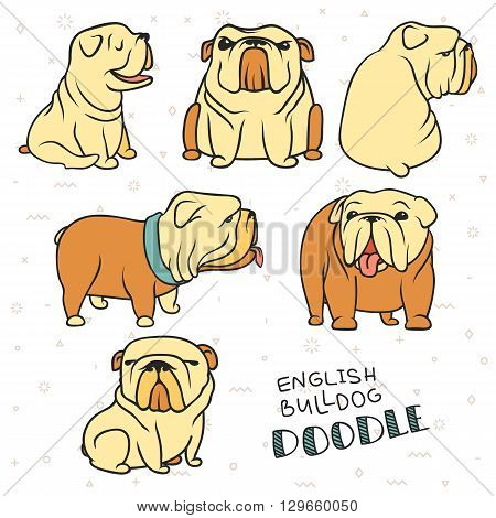 poster of Dogs characters. Doodle dog. Sticker dog english bulldog. Funny character. Funny dogs. Funny animals. Dog isolated. Dogs set