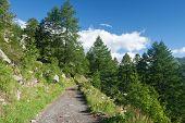 Alpine Path In Italy