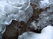 Icy Forms In Mountain Creek