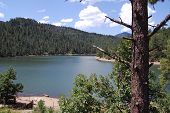 Bonito Lake New Mexico