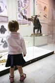 little girl in musem look on monkey