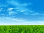 3D illustration of a conceptual green, fresh and natural grass field or lawn, blue sky background in poster