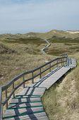 Dunes Of Amrum