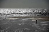 Lone Surfer On A Beach