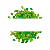 Empty Sign Template With Green Tree Leaves In Paper Cut Style. Copy Space Card Label On Leaf Pile Fo poster