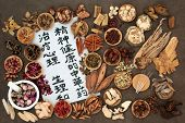 Chinese herbs used in herbal medicine with acupuncture needles and calligraphy script on rice paper. poster