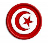 Turkey button shield on white background