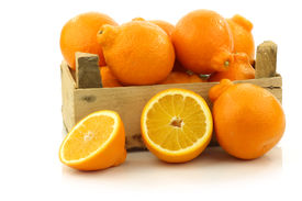foto of tangelo  - fresh and colorful  Minneola tangelo fruit and a cut one in a wooden crate on a white background - JPG