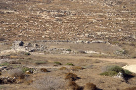 picture of tabernacle  - Place of the Tabernacle in Shiloh Valley - JPG