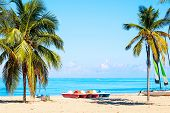 The Tropical Beach Of Varadero In Cuba With Sailboats And Palm Trees On A Summer Day With Turquoise  poster
