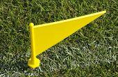 Yellow Boundary Flag
