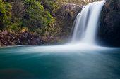 Tawhai cai no Tongariro NP, Nova Zelândia