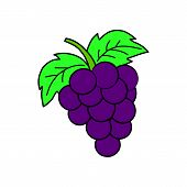 Grapes Icon Isolated On White Background From Gastronomy Collection. Grapes Icon Trendy And Modern G poster