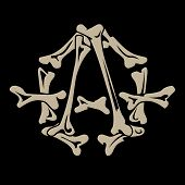 Anarchy_bones.eps
