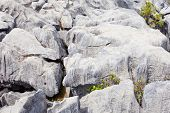 Rainwater carved marble rock called karren