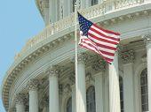 U.S. Capitol & Flag