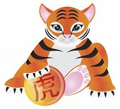 image of white tiger cub  - Tiger Cub Sitting Holding Ball with Chinese Text Tiger Symbol Illustration Isolated on White Background - JPG