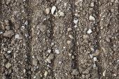 Stony Soil Background