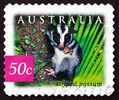 Postage Stamp Australia 2003 Striped Possum, Marsupial Animal