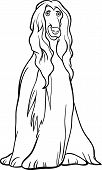Afghan Hound Dog Cartoon For Coloring Book