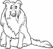 Collie perro de dibujos animados para colorear libro