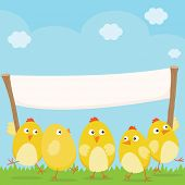 Happy Easter Chicks with large blank banner