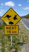 foto of promontory  - road sign in the Wilsons Promontory National Park - JPG