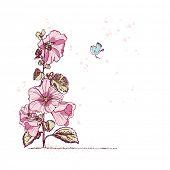 hollyhock flower and little bird