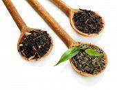 Folhas de chá seca com verde em colheres de madeira, isolados no branco