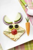 Bunny Rabbit Made From Food With White Plate And Spoon