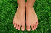 Beautiful woman legs on green grass