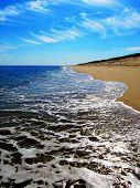 Cape Cod Blue Seashore