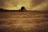 small farm house and tree with dried grass in front at sunset before storm