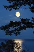 Moon Over Lake