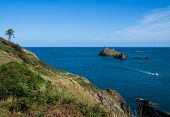 South Devon Coast Path At Dartmouth
