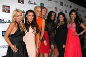 LOS ANGELES - OCT 23:   Real Housewives of Beverly Hills Season 4 Party AND Vanderpump Rules Season