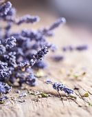 Bunch of lavender flowers on an old wood table