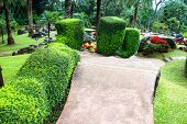Mae Fah Luang Garden,locate on Doi Tung,Thailand