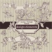 Set of vector vintage magic fairytale floral design elements