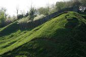 Grass Slope