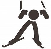 picture of nordic skiing  - Winter sport icon  - JPG