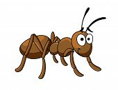 Cute little cartoon ant insect