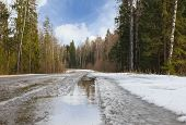 picture of slippery-roads  - dangerous bend  road is slippery in woodland