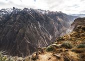 Colca Canyon Overview
