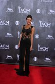 LAS VEGAS - APR 6:  Lacey Owen at the 2014 Academy of Country Music Awards - Arrivals at MGM Grand G