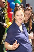 LOS ANGELES - APR 5:  Drew Barrymore at the Safe Kids Day Los Angeles 2014 at The Lot on April 5, 20